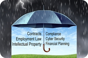 <b>How to Protect Your Revenue, Assets and Profit From Loss</b>